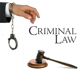 What Are the Two Main Functions of Criminal Law?