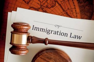 choosing immigration lawyer