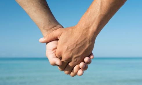 domestic partnership